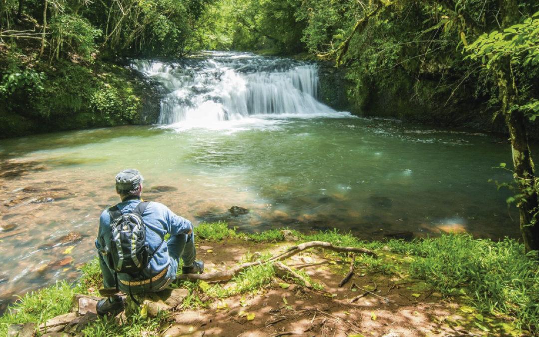 Conheça as mais belas cachoeiras da Serra Gaúcha