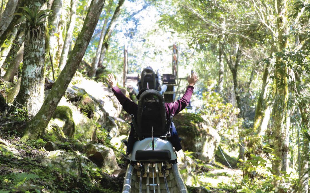 Viva aventuras inesquecíveis no Alpen Park