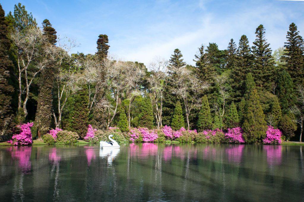 Nos meses mais frios, as azaleias são responsáveis pelas cores do Lago Negro.